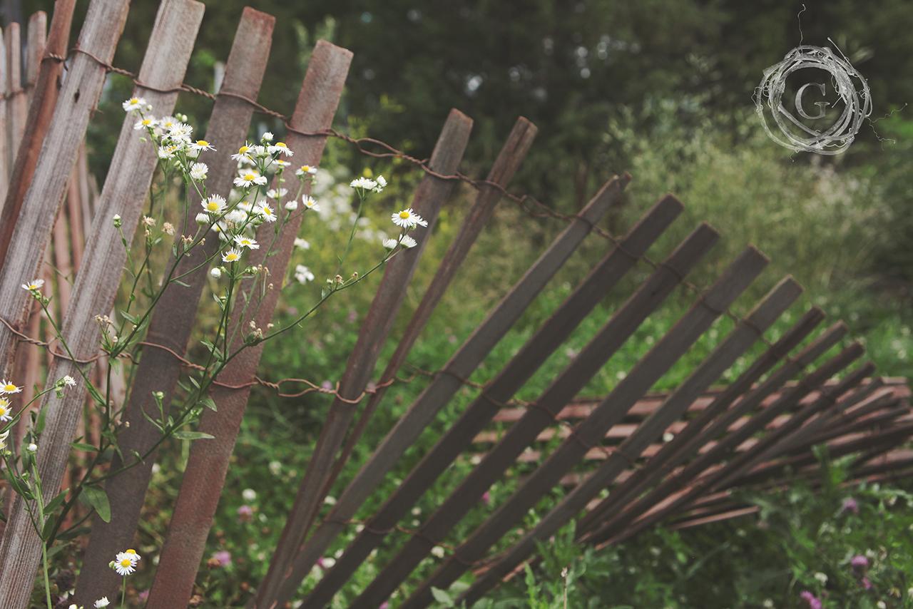 cropflowers