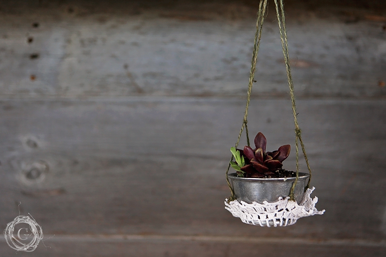 handmade hanging plant and flower holders