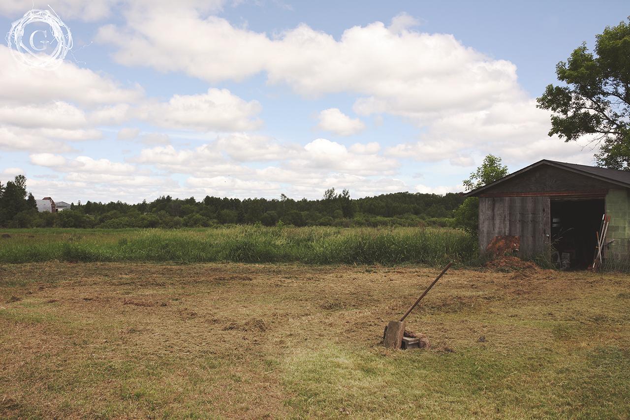 oldfarmnewfarmorchard