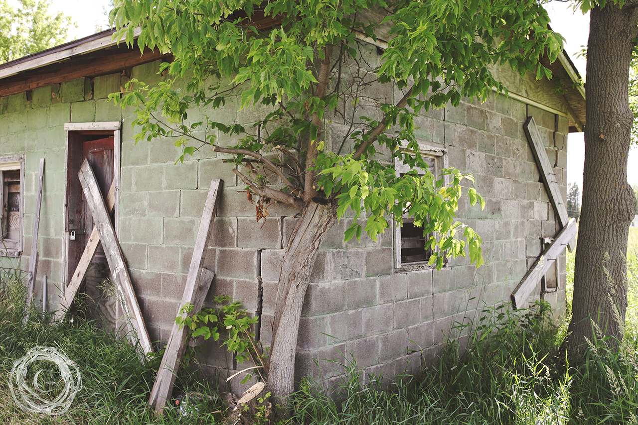oldfarmnewfarmshed
