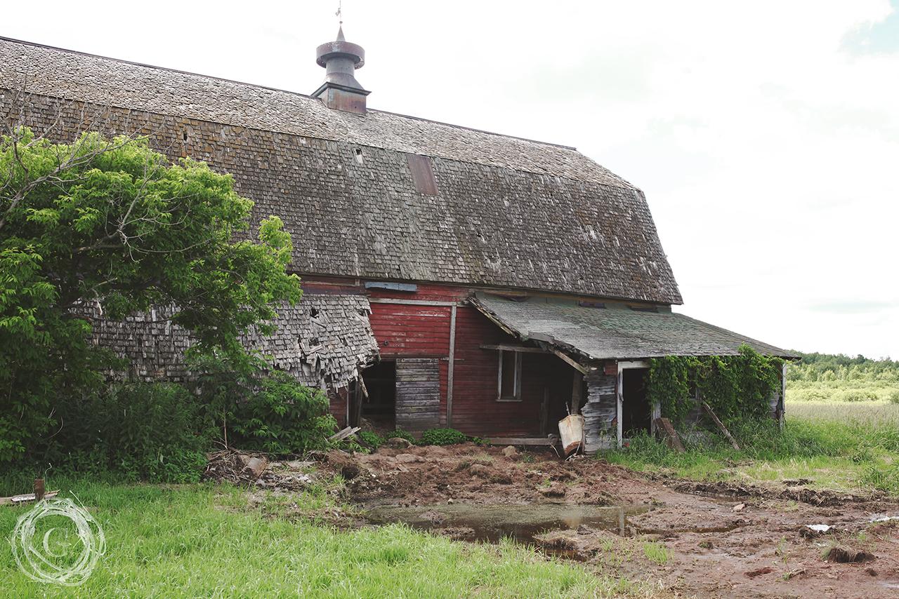 oldfarmnewfarmsilo